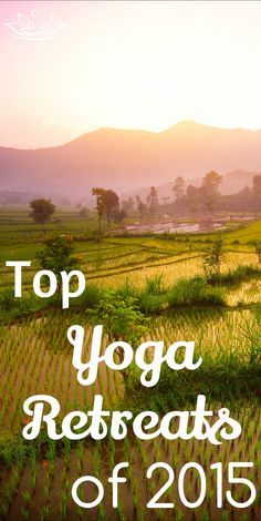 Travel, relax, and restore. Here are the top yoga retreats of 2015.