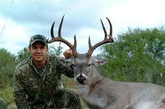 """9 pt. / 131"""" S. Texas Deer"""