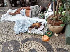 """Glenn Greenwald creates shelter that only hires homeless people to help homeless dogs. """"Anyone who loves animals and has ever adopted one knows what a fulfil. Types Of Animals, Animals Of The World, Animals And Pets, Cute Animals, Baby Dogs, Dogs And Puppies, I Love Dogs, Cute Dogs, Animal Shelters"""