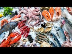 The Top 3 Seafood Health Benefits -- The American diet includes a fairly bad rap (and with reason). However, according to new government figures, things could be looking up though. Learn how a diet rich in seafood can help you be healthier, learn more! Seafood Online, Seafood Market, Frozen Seafood, Fish And Seafood, Fresh Seafood, Ibs Diet, Reflux Diet, Ketogenic Diet, Sustainable Seafood
