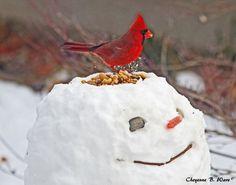 Bird Feeder   Community Post: 40 Creative Snowmen and Other Snow Sculptures