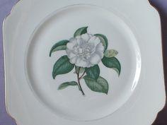 "Vintage Square Plate, 8"", Selb bavaria plate, Camellia, White flower plate…"