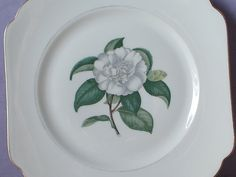 "Vintage Square Plate, 8"", Selb bavaria plate, Camellia, White flower plate…"