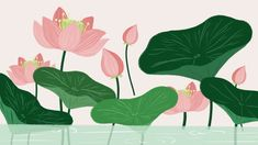 floral flower lotus pink Watercolor Background, Watercolor Flowers, Vintage Flowers, Floral Flowers, Flower Frame, Flower Art, Spring Background Images, Flower Backgrounds, Backgrounds Free