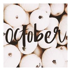 HAPPY 1st of OCTOBER!! Fall is here and we have so many exciting things to share! Stay tuned loves