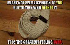 Earning a karate belt is one of the best. Martial Arts Humor, Martial Arts Quotes, Aikido, Judo, Karate Quotes, Taekwondo Quotes, Krav Maga Kids, Kenpo Karate, Shotokan Karate
