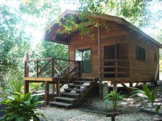 Vanilla Hills Lodge in San Ignacio, Belize is a must! Immersed in the jungle and an amazing host. Would def come back here to stay! Tourist Center, Shady Tree, Hills Resort, Autumn Trees, Best Vacations, Day Tours, Belize, Lodges, Ecology