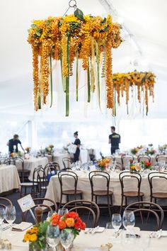 indian marquee chandeliers - nov 2012 (vincent long)