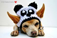 Gorro Disfraz Oso Panda