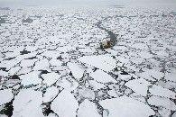La extensión del hielo Ártico alcanzó su mínimo histórico.