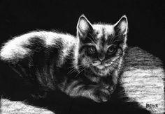Kitty...Barbara Fox