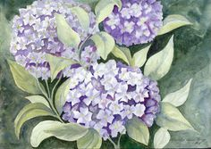 """Hydrangeas""  Watercolor"