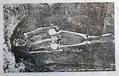 Guest writer MO KEOHAN reveals how science revealed the real identity of an 'Essex witch' skeleton in St Oysth Gypsy Witch, Witches, Skeleton, Saints, Gender, Bruges, Witch, Skeletons, Wicked