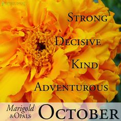 people born in october are strong decisive kind and adventurous their birth flower is the marigold and their birth stone is the opal or tourmaline