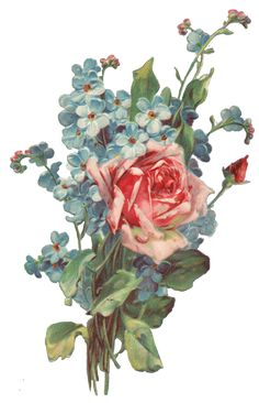 515px × 800px     Roses And Forget Me Not Bouquet Png Image Free Clip Art