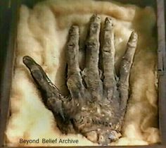 The hand was found hidden behind a wall in a Yorkshire cottage