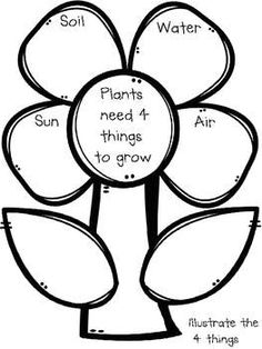 Plant Emergent Reader with Activities {Facts About Plants & Seeds} Kindergarten – Gardening for beginners and gardening ideas tips kids Kindergarten Units, Kindergarten Art Projects, Kindergarten Learning, Teaching, Kids Learning, Science For Kids, Science Activities, Preschool Science, Preschool Ideas