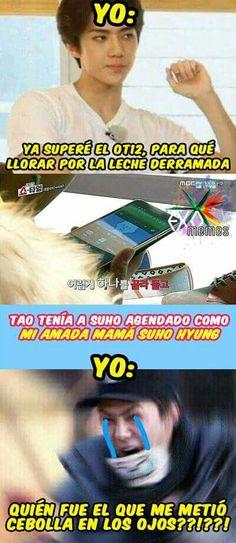 ⚠los memes no son mios⚠ Para tod@s los exo-l's, aquí hay memes bien … #detodo # De Todo # amreading # books # wattpad