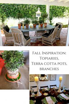 topiaries-for-fall-i