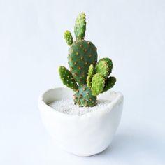Cactus and Planter Cinnamon Bunny Ear Cactus by TierraSolStudio Bunny Ear Cactus, Growing Plants, Planter Pots, Etsy Seller, Handmade Gifts, Green, Palace, Cinnamon, Cactus