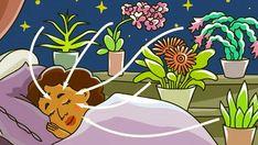 7 pokojových rostlin, které čistí vzduch a pomůžou Vám k lepšímu spánku! – mojekrasa.net Gerbera, Aloe Vera, Pikachu, Kids Rugs, Marvel, Fictional Characters, Detox, Gardening, Kid Friendly Rugs