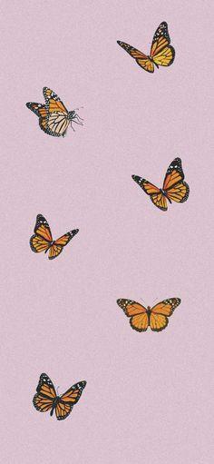 motýl tapety iphone x big pink