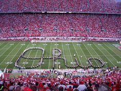 Google Image Result for http://dent.osu.edu/admissions/images/Script-Ohio.gif