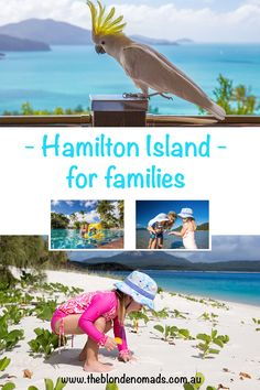 Hamilton Island with The Blonde Nomad family. Koalas, Crocs and Buggies Queensland Australia, Australia Travel, Travel With Kids, Family Travel, All Family, Family Holiday, Hamilton Island, Great Vacations, Plan Your Trip