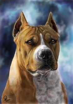 ' #dog #animal #american #staffordshire #terrier