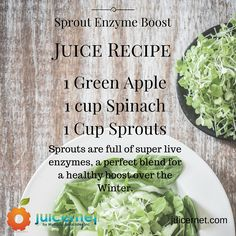 Juicernet is the one-stop-shop for all of your commercial juicer needs. Browse our products to find the right professional juicer machine for your business. Fruit Juicer, Citrus Juicer, Commercial Juicer, Vegetable Juicer, Juicer Machine, Juice Recipes, Making Machine, Fruits And Vegetables, Sprouts