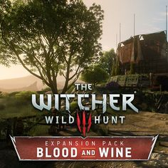 The Witcher Blood and Wine - Tourney Grounds, Kuba Wichnowski The Witcher Wild Hunt, The Witcher 3, 3d Sketch, Sketches, The Witcher Books, Witcher Art, Inspirational Artwork, The Expanse, Card Games