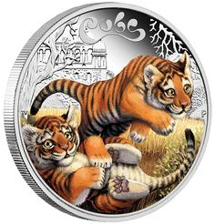One of a delightful five-coin series depicting cubs from the big cat family, this gorgeous release portrays young tigers | The Cubs - Tiger 2016 1/2oz Silver Proof Coin