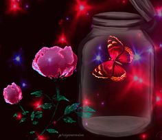 Butterfly Fairy, Butterfly Flowers, Beautiful Butterflies, Beautiful Love, Beautiful Gifts, Amazing Dp, Awesome, Good Night Gif, Butterfly Pictures