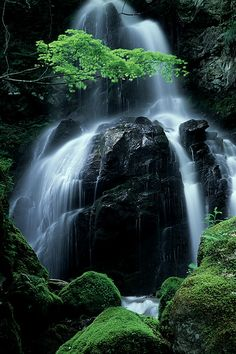 Sankai Falls 三階の滝, via Flickr. #nature #photography #water
