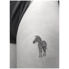 Fine line zebra tattoo on the left thigh. Tattoo artist: Jakub...