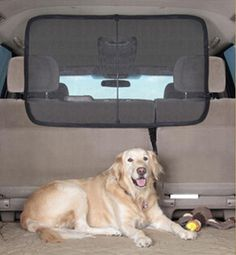 Auto Pet Barrier Blocks Dogs Access To Car Front Seats & Keep Dogs In Back Seat/Trunk