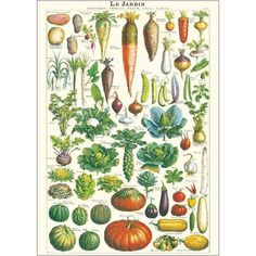 vegetable poster - Google Search