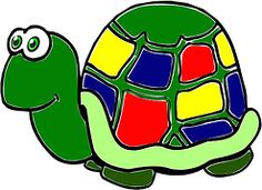Tortue, Des Animaux, Funny