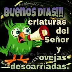 Buenos días Good Morning In Spanish, Good Morning Good Night, Qoutes, Funny Quotes, Funny Memes, Hello In Spanish, Mexican Humor, Funny Phrases, Good Morning Messages