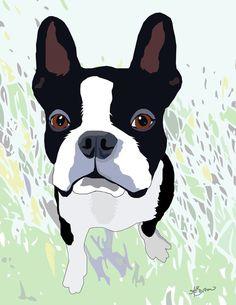 For Boston Terrier fans #dog #boston terrier