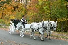the carriage!