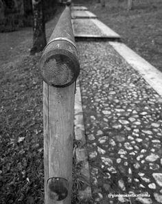 https://www.flickr.com/photos/130138738@N02/shares/GRb01H   Foto di Gianluca Santacatterina