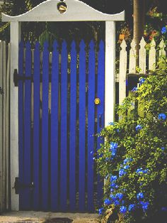 I'm considering removing our boring iron fencing and putting up tall white picket with a colorful gate like this. Garden entry gate.