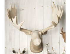 Trophy Heads - Cute Faux Taxidermy Heads - Country Living