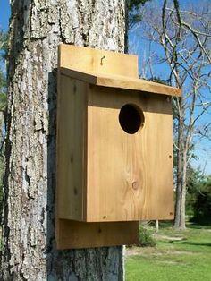screech owl house screech owl nesting box