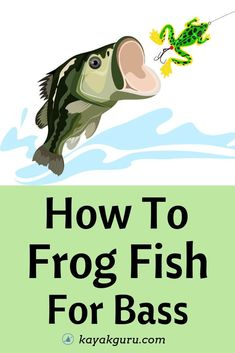 How To Frog Fish For Bass - Find bass with this popular spring and summer topwater lure Kayak Fishing Tips, Bass Fishing Lures, Crappie Fishing, Carp Fishing, Best Fishing, Saltwater Fishing, Fishing 101, Women Fishing, Fishing Stuff