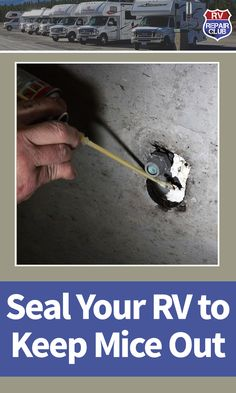 Keeping mice out of an RV. This requires going over every inch of the RV looking for gaps, holes or spaces where mice can make their way into the inside of the RV. Rv Camping Checklist, Rv Camping Tips, Camping Ideas, Camping Products, Camping Essentials, Family Camping, Camping List, Camping Supplies, Camping Stuff
