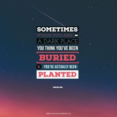 Sometimes when you're in a dark place you think you've been buried, but actually you've been planted. – Christine Caine