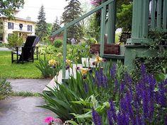 Front yard perennial border flowers ideas