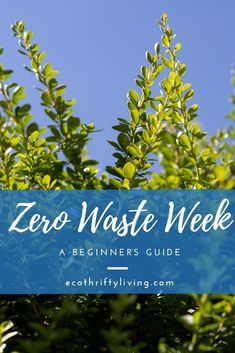 Have you heard of Zero Waste Week? It's an annual campaign in September to help and encourage us all to reduce our rubbish! Reduce Waste, Zero Waste, Can You Take, Awareness Campaign, Greenhouse Gases, Go Green, How To Find Out, Encouragement